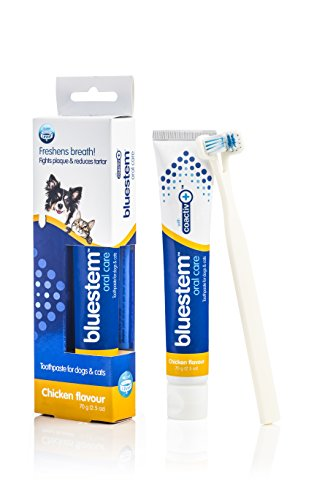 Bluestem Oral Care Toothpaste for Dogs and Cats, Freshens Breath, Fights Plaque And Reduces Tartar, Chicken Flavor 2.5 oz