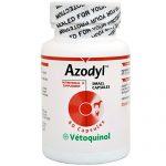 Azodyl, 60 Capsules