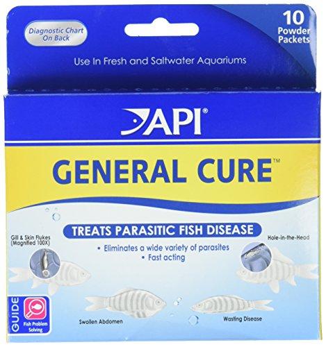 API Powder General Cure, 10 count