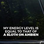 My Energy Level Is Equal To That Of A Sloth On Ambien – 8 3/4″ x 2 1/4″- Vinyl Die Cut Decal / Bumper Sticker For Windows, Trucks, Cars, Laptops, Glasses. Mugs, Etc.