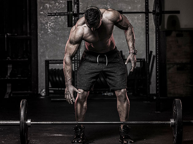 your complete guide to bodybuilding