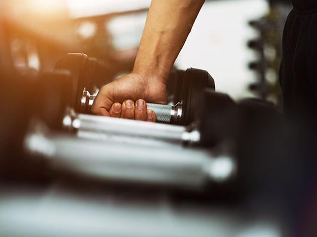 Bodybuilding: a beginner's guide