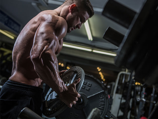 Bodybuilding | A Beginner's Guide