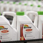 Bayer to pay $2 billion after losing suit that claims weedkiller Roundup causes cancer