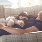 Can an Occasional Nap Keep Heart Problems Away?