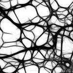 McGill study identifies new role of major genetic risk factor in Alzheimer's disease