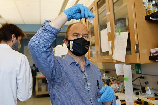 Marc Johnson, a virologist at the University of Missouri, examining leftover RNA from samples of wastewater collected by the Missouri Department of Natural Resources.